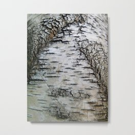 Life of a Fissure Metal Print