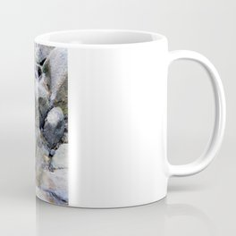 Upper Maxwell Falls in Autumn Coffee Mug