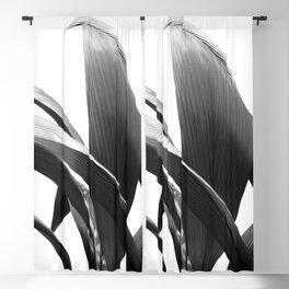 Banana Leaves Jungle Delight #2 #tropical #decor #art #society6 Blackout Curtain