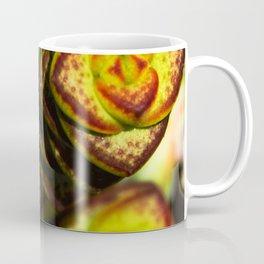 succulent cactus II Coffee Mug