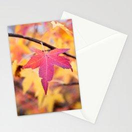 Autumn Still Stationery Cards
