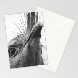 Seriama I Stationery Cards