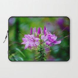 Purple Spider Flower Laptop Sleeve