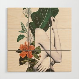 natural beauty-collage 2 Wood Wall Art