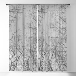 Flying branches, black and white Sheer Curtain