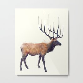 Elk // Reflect (Right) Metal Print
