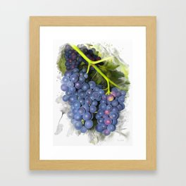 Concord grape Framed Art Print