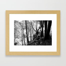 Woohoo Framed Art Print