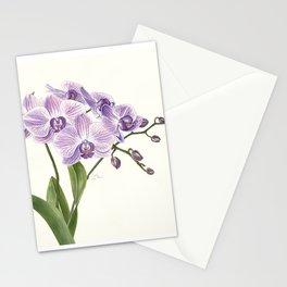 Purple phalaenopsis artwork Stationery Cards