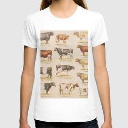 Bulls And Cows T-shirt