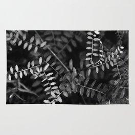 Black and white nature Rug