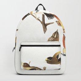 Evening grosbeak, Birds of America, Audubon Plate 373 Backpack