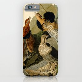 Ruffed Grouse (Bonasa umbellus) iPhone Case