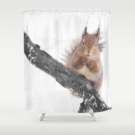 Little squirrel - smack! Shower Curtain