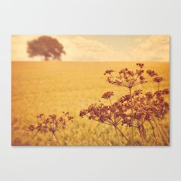 By the side of the wheat field. Canvas Print