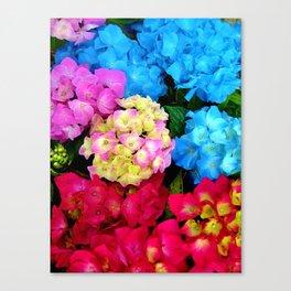 Red Blue Rose Flower Blossoms Hydrangeas Canvas Print