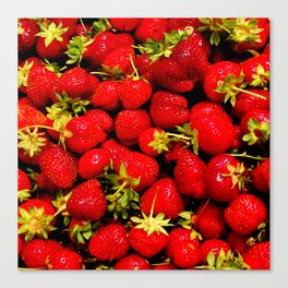 """Strawberries Galore features a large group of strawberries fresh from a """"you pick"""" fruit stand. Canvas Print"""