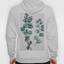 Eucalyptus leaves, blue green round leaves Hoody