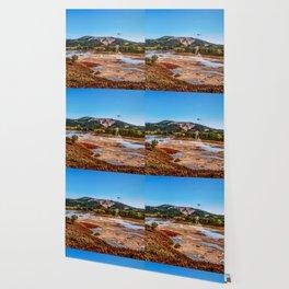 Bear Resort: Caldera Uzon Wallpaper