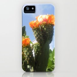 Blossoms in the Spring iPhone Case