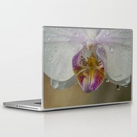 orchid Laptop & iPad Skins featuring Orchid by Mary Kilbreath