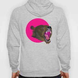 Animal Collective: Grizzly Bear Hoody