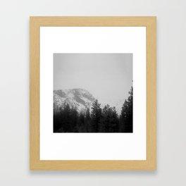 Daunt Framed Art Print