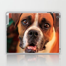 boxer's face weeping of friendly behavior Laptop & iPad Skin
