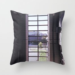 berks, light Throw Pillow