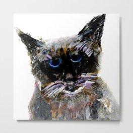 Alte Katze Metal Print
