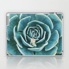echeveria. succulent photo Laptop & iPad Skin