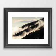 A Song Of Trees Framed Art Print