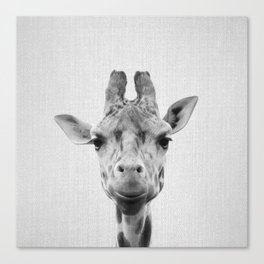 Giraffe - Black & White Canvas Print