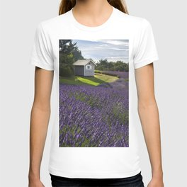 Lavender Surround T-shirt