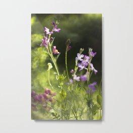 Blooming garden Metal Print