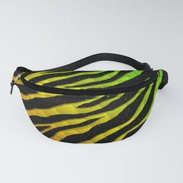 Ripped SpaceTime Stripes - Rainbow ROYGB Fanny Pack