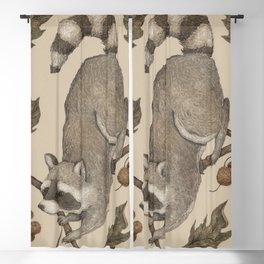 The Raccoon and Sycamore Blackout Curtain