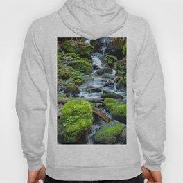 Downstream Hoody