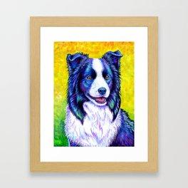 Colorful Border Collie Dog Framed Art Print