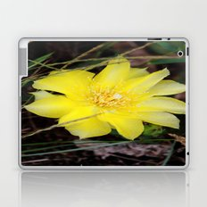 cactus flower Laptop & iPad Skin