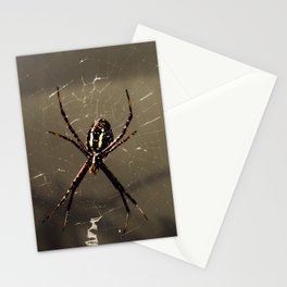 Little Seamstress Stationery Cards