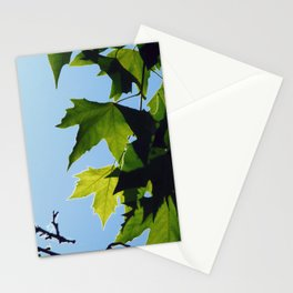 Nature's Design Stationery Cards