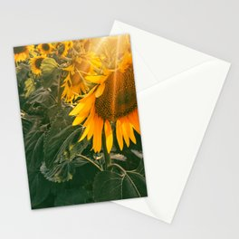 summer in the fields Stationery Cards
