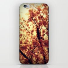 Burst Into Light iPhone & iPod Skin