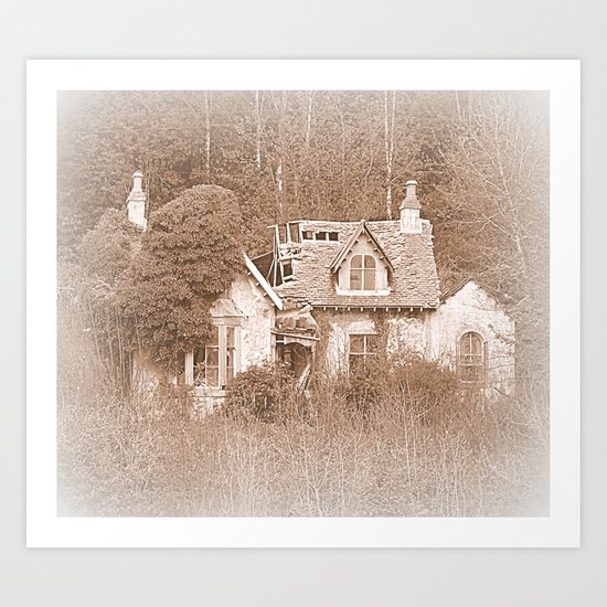 Derelict House Art Print