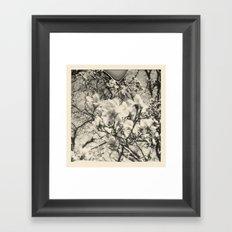 magnolia +1 Framed Art Print