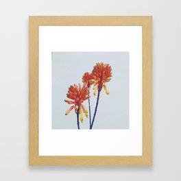 Fire sticks Framed Art Print
