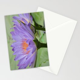 Blue Water Lilies in Hangzhou Stationery Cards