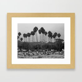 California Symphony Framed Art Print