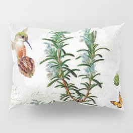 Cottage Style Rosemary, Hummingbird, Butterfly, Herbal Botanical Illustration Pillow Sham